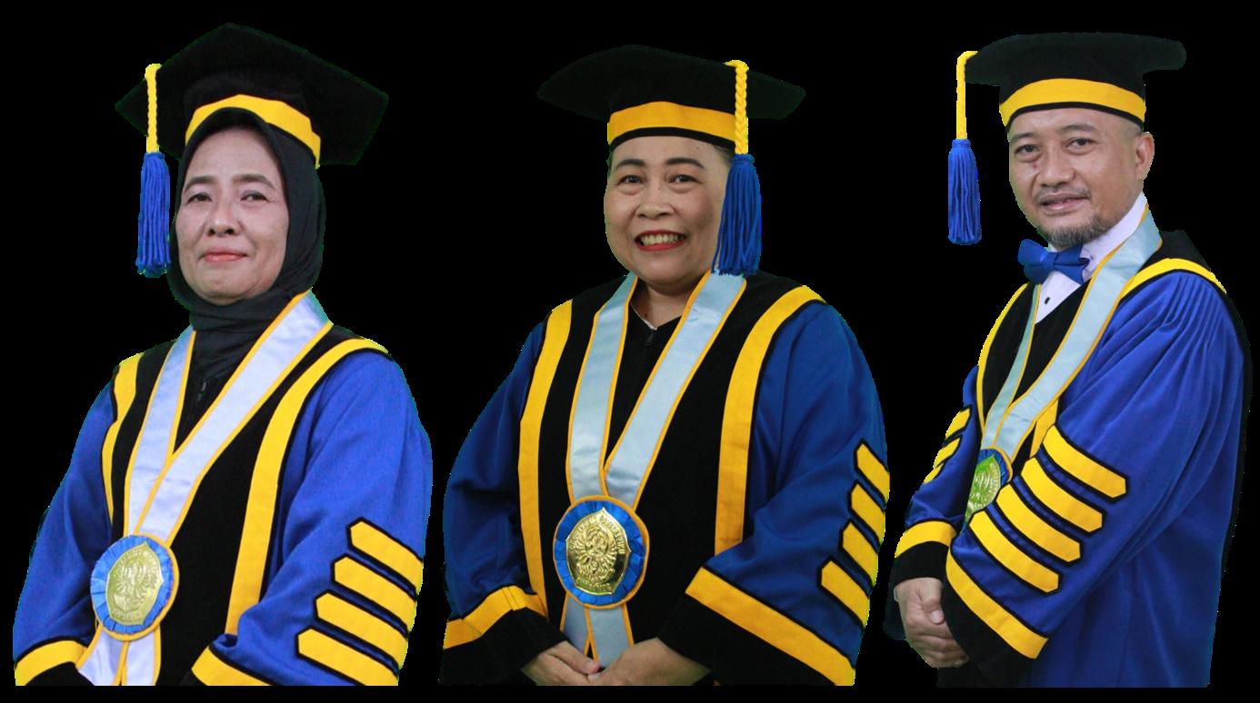 The Pioneers of Professor in Departement Chemistry